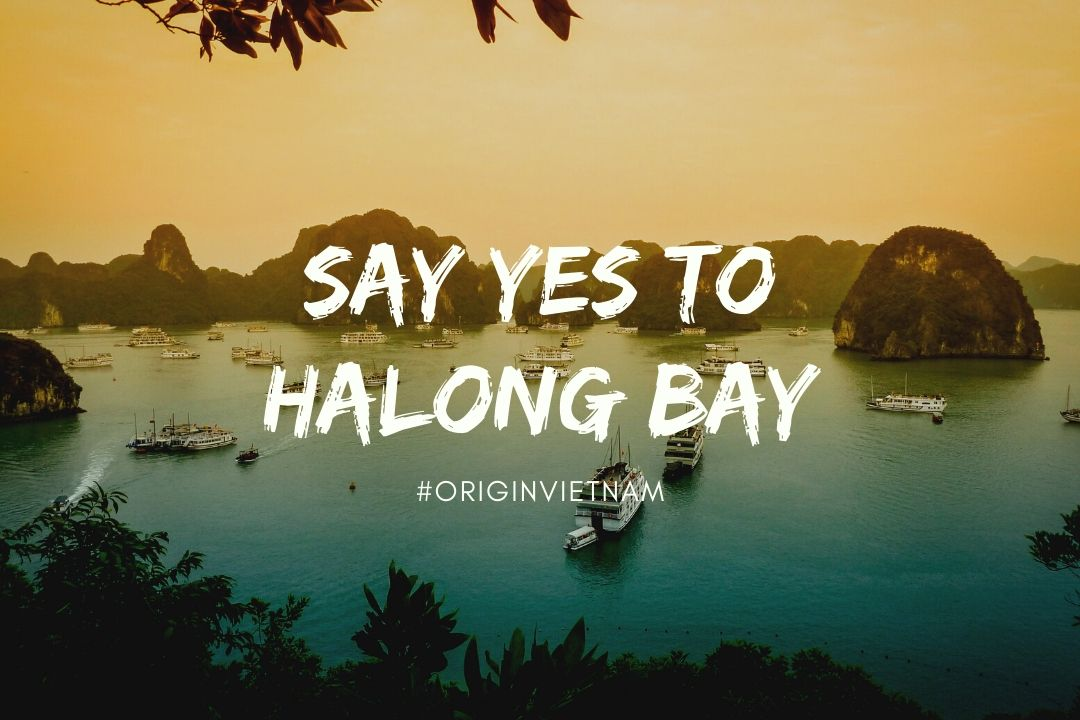 Most luxurious halong bay tour