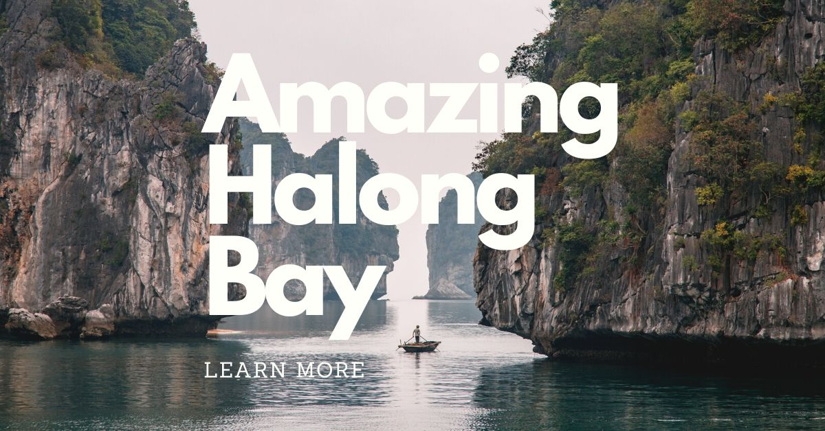 Book best trip in Halong Bay Vietnam