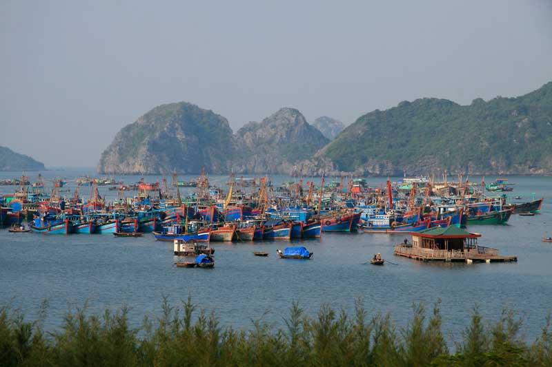 Fishing village festival in Cat Ba Island