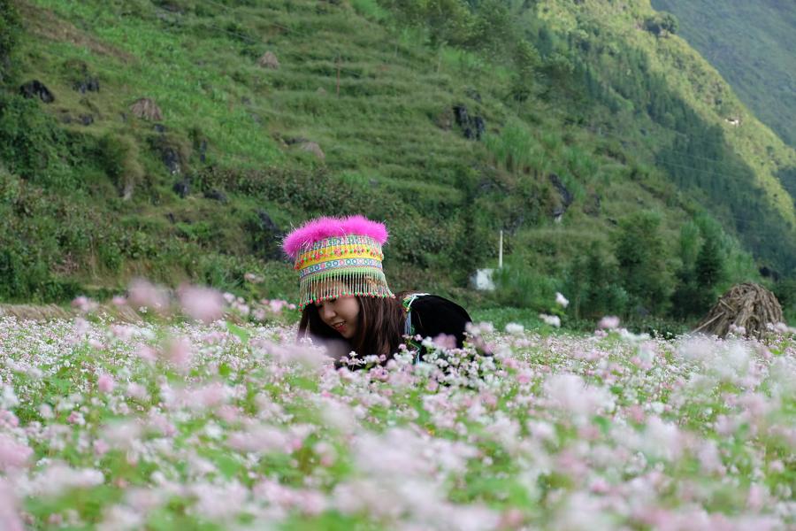 Woman beside flower Ha Giang