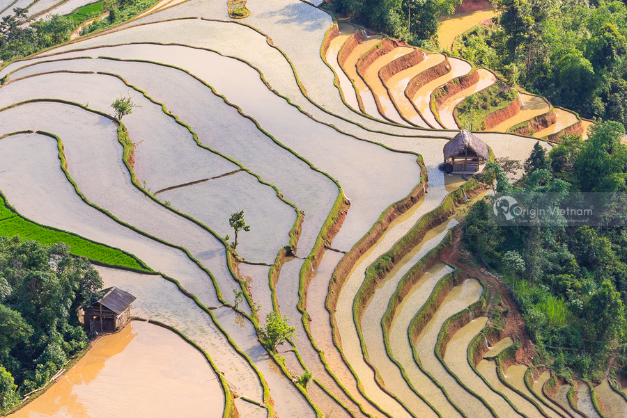 Water season - Hoang su phi