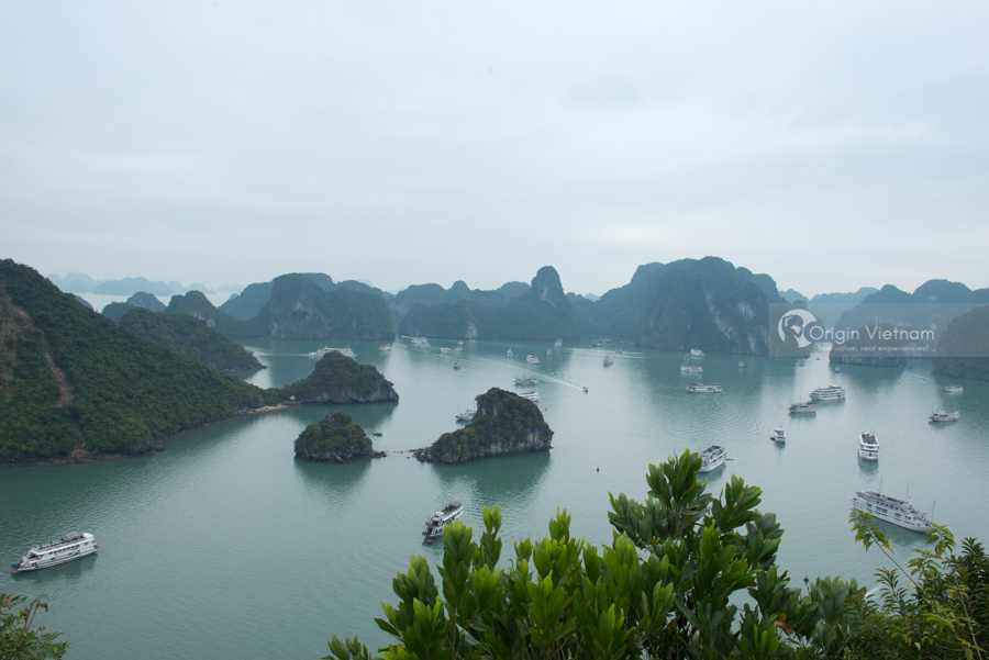 Handbook When Travel To Halong At The Weekend