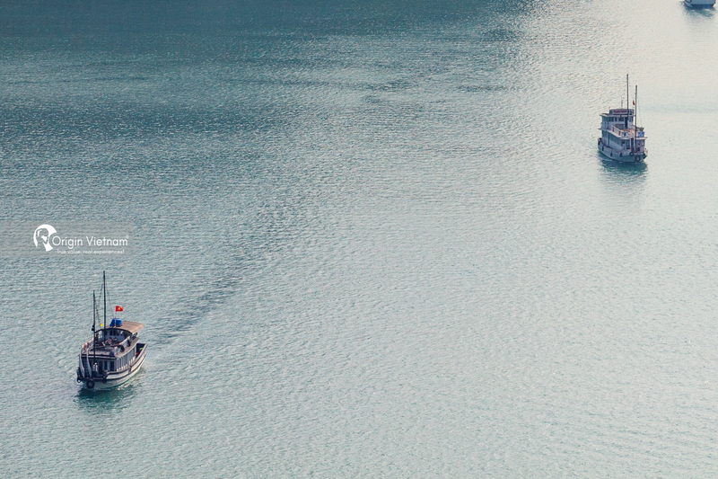 The cruises in Halong