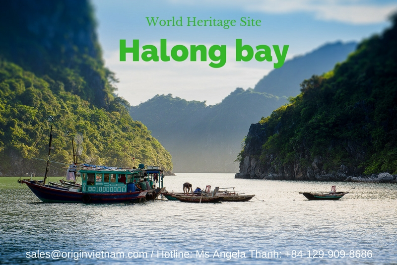 Local Organisations And Communities Cooperate To Protect World Heritage Site