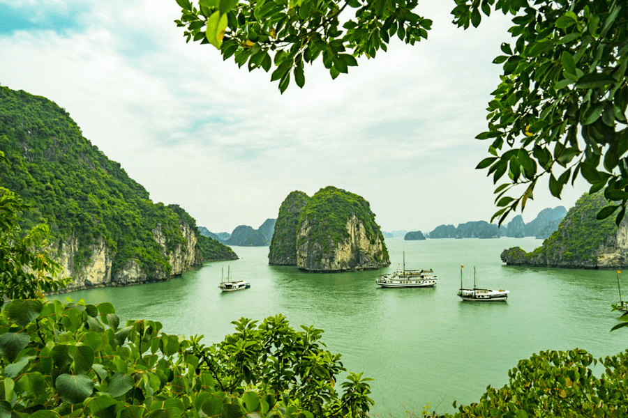 How To Visit Halong Bay From Hanoi City