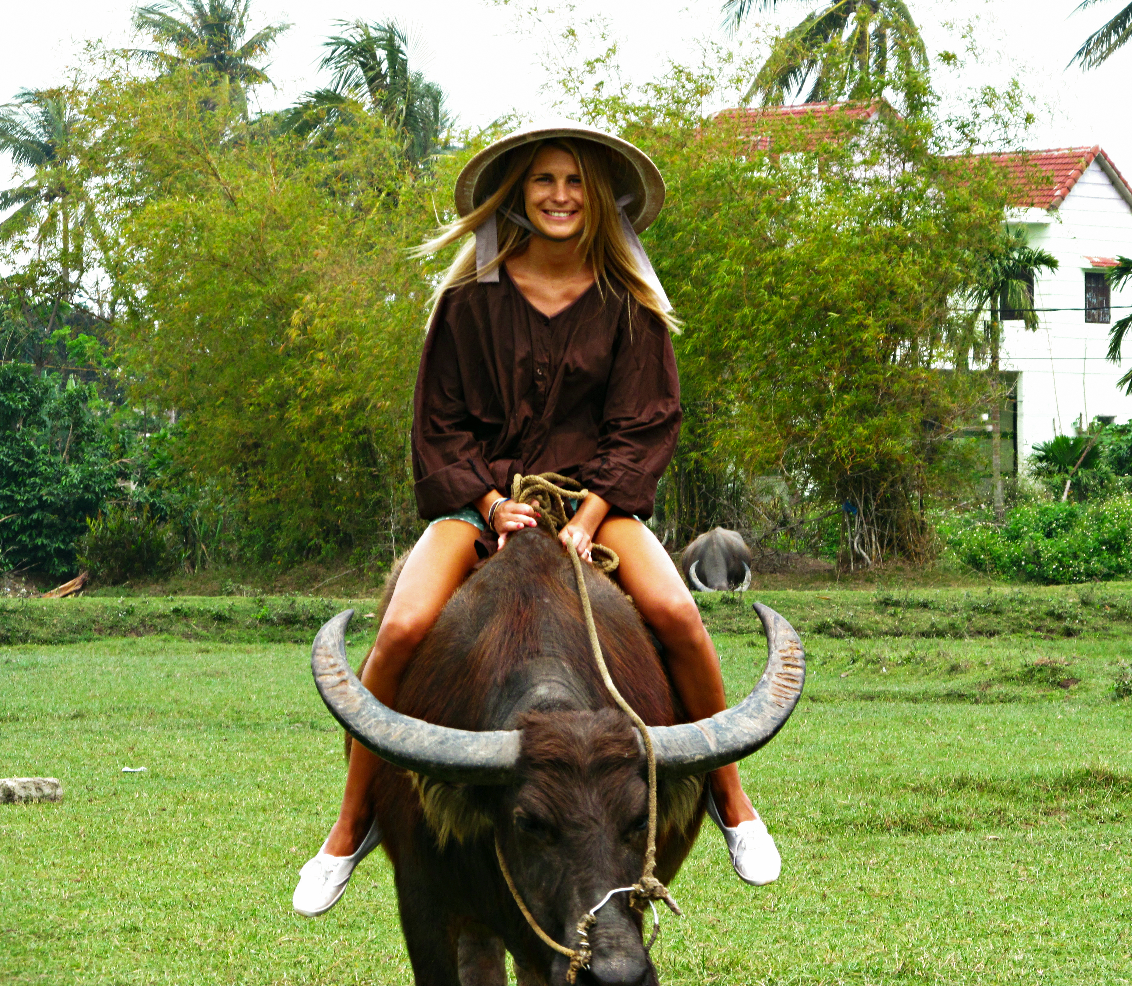 Buffalo riding in Cam Thanh village