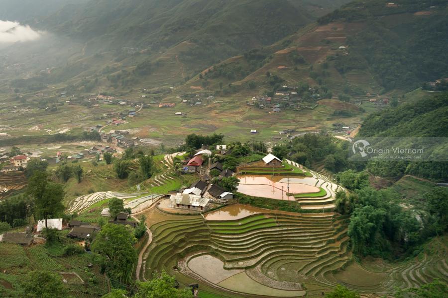 Amazing terrace rice field at Lao Chai Ta Van