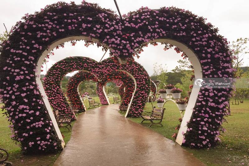 Valley of Love in Dalat