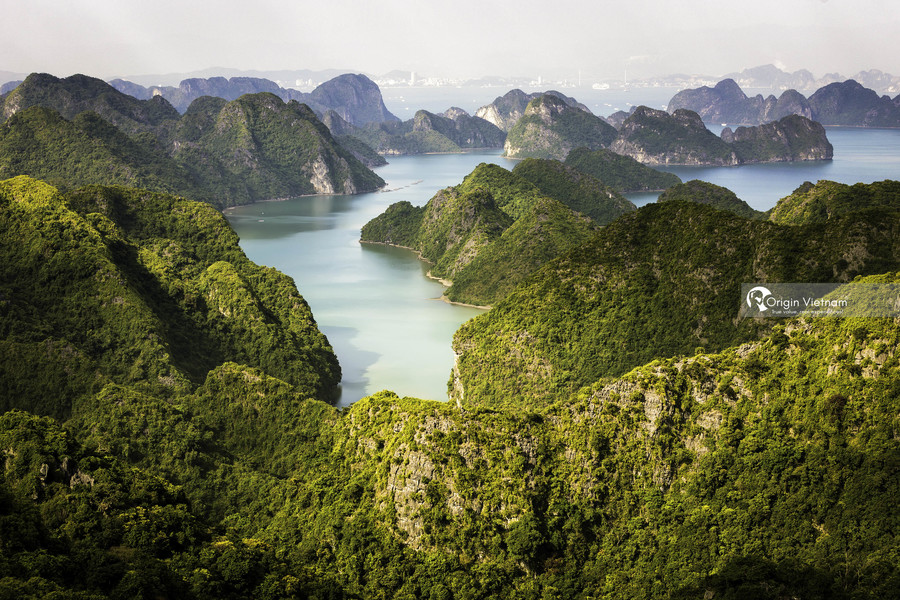 View Halong Bay from Cat Ba island