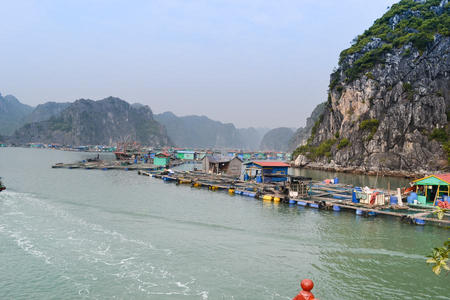 Amazing Summer Days At Lan Ha Bay