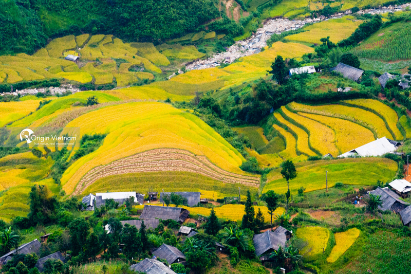 The most majestic place to photograph rice season in Mu Cang Chai