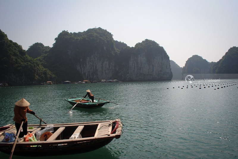 Explore Lan Ha Bay With 'Stand Up Paddle' Surfboard