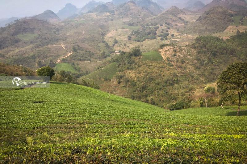 Suoi Giang