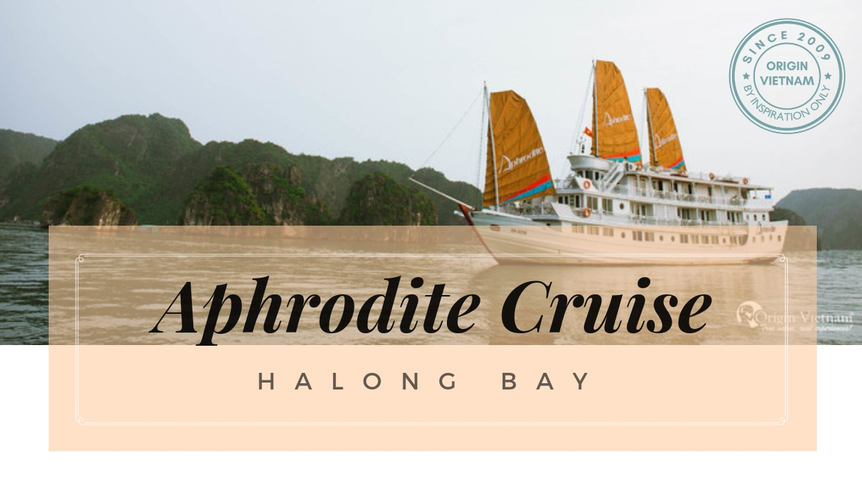Aphrodite Cruise – The Goddess Beauty Brighten In Middle Of Dragon Land, ORIGIN VIETNAM