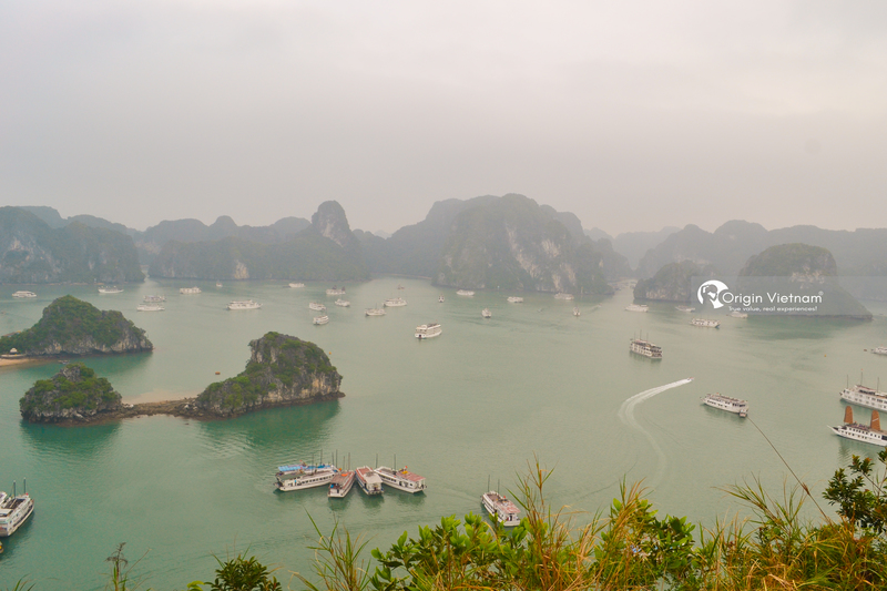 Travel Halong By Own Car