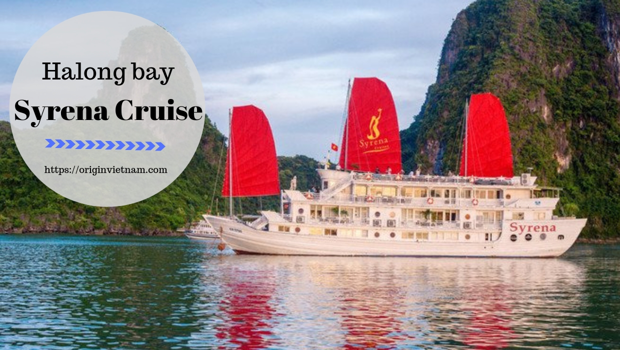 Syrena Cruises – The True Indulgence Flavors Of Halong Bay