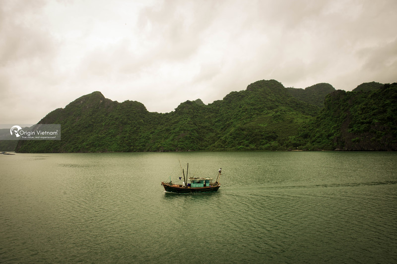 Get A Halong Bay Private Tour To Enjoy The Natural Beauty Of Halong Bay