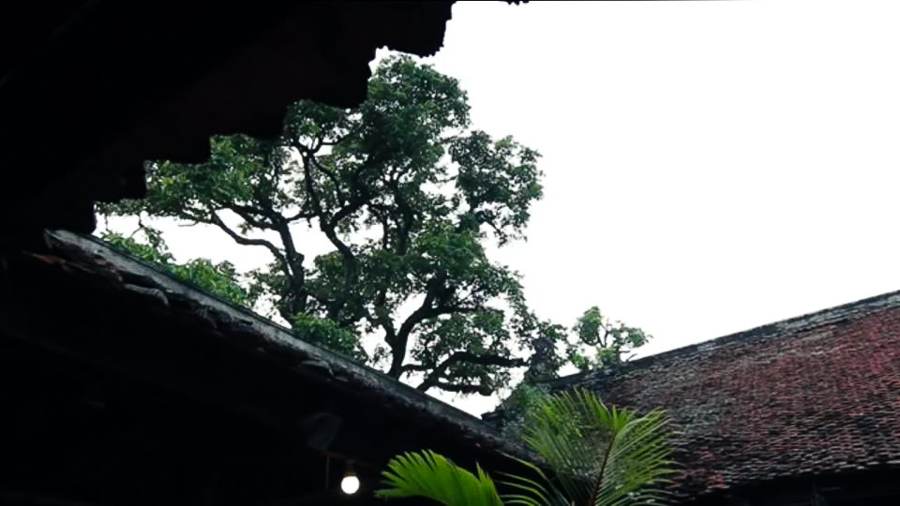 The Beauty Of Ancient Chuong Pagoda