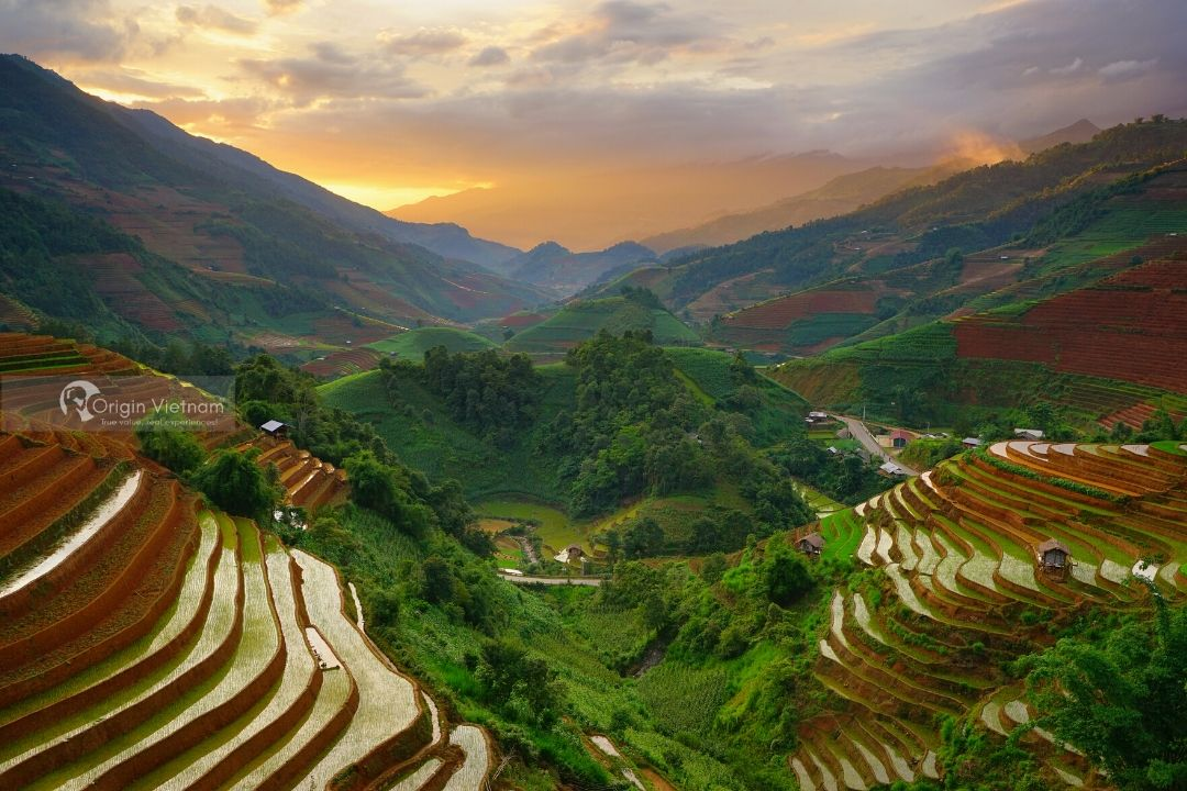 Mu Cang Chai In Pour Water Season, ORIGIN VIETNAM