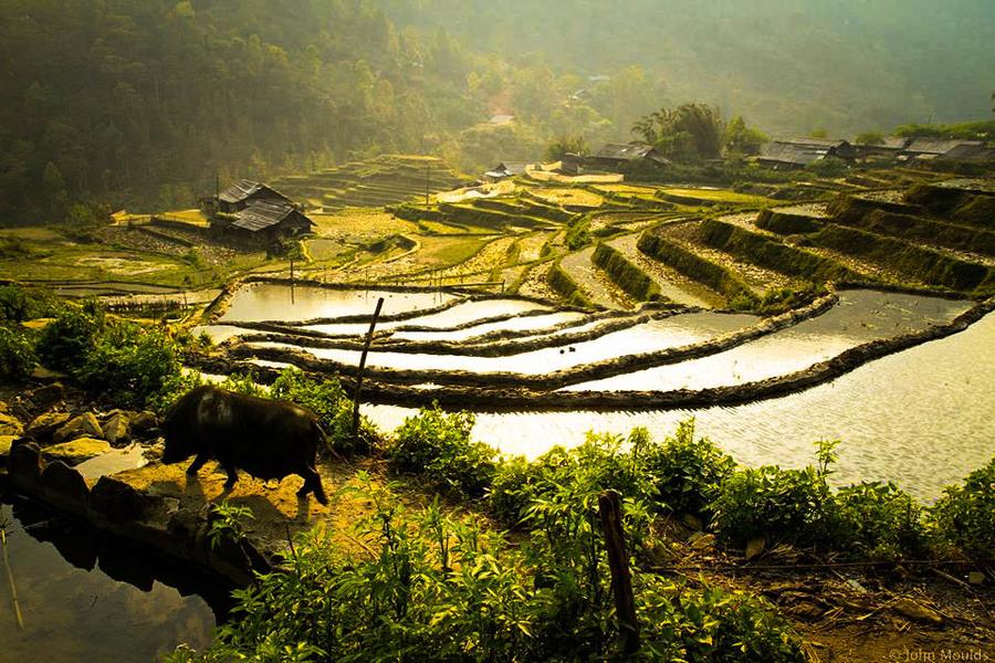 Sin Chai Village - Top 7 Best Village To Visit From Sapa