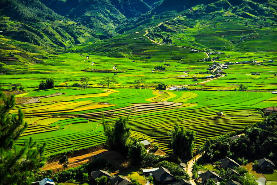 Y Linh Ho village - Top 7 Best Village To Visit From Sapa