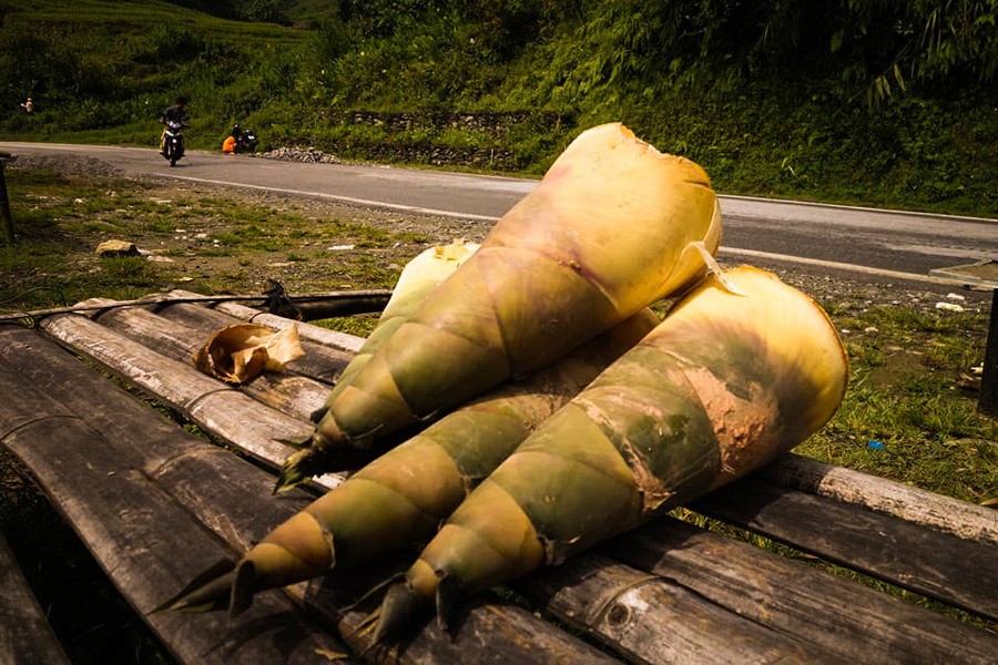 Sapa bamboo shoots - Special Food In Sapa Should Not Miss Before You Leave