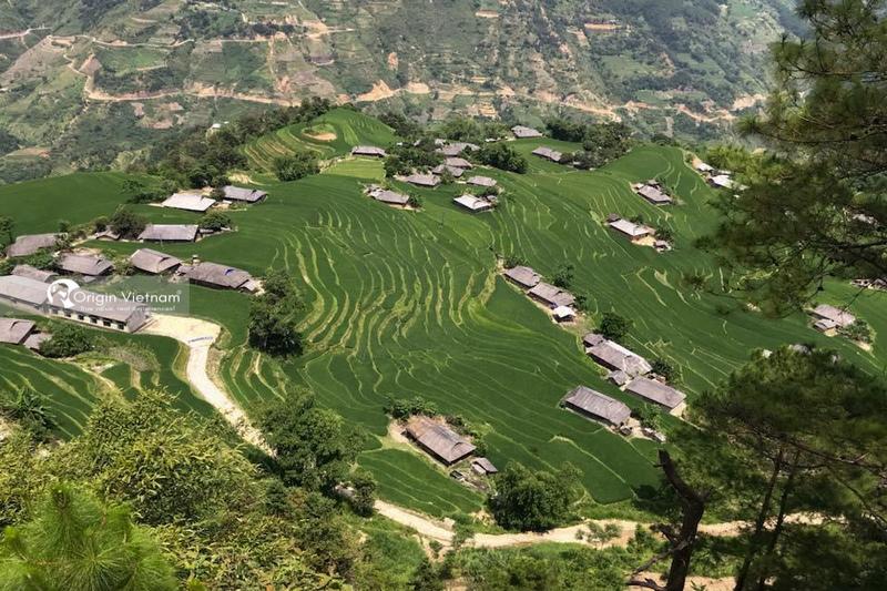 Hoang Su Phi