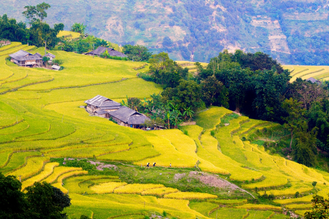Travel Ha Giang By Months