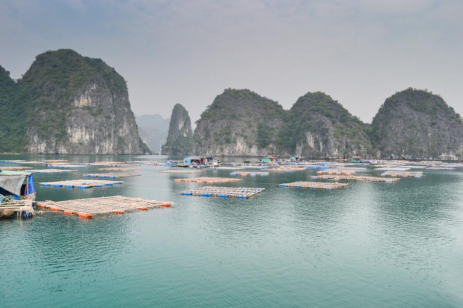 Boat Price in Lan Ha Bay