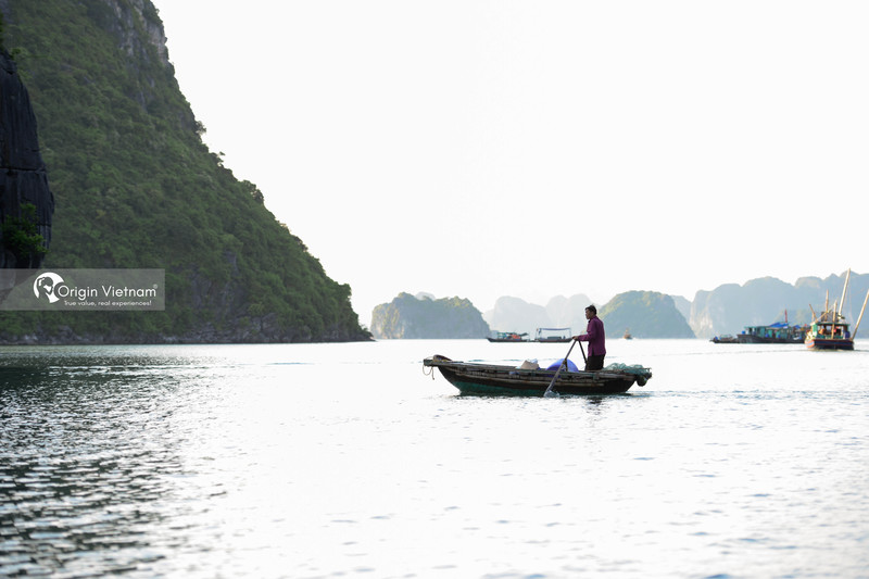 How Much Do You Know About Lan Ha Bay