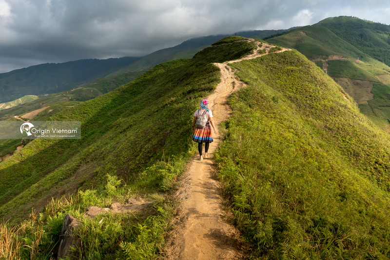 Top 14 Things to Do in Moc Chau