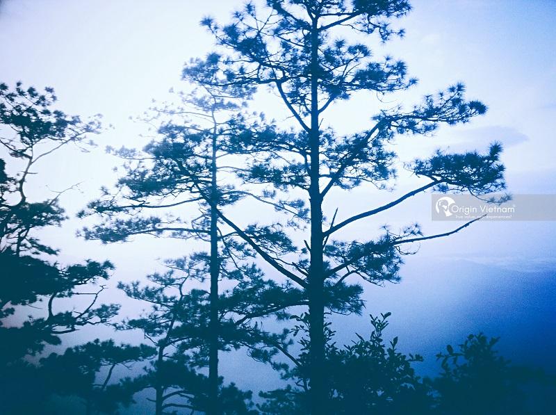 Lang Biang Mountain