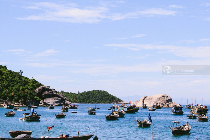 Cham Island, ORIGIN VIETNAM