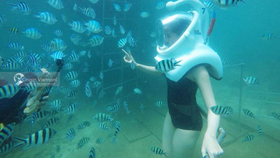 Walking Under The Sea Of Cu Lao Cham
