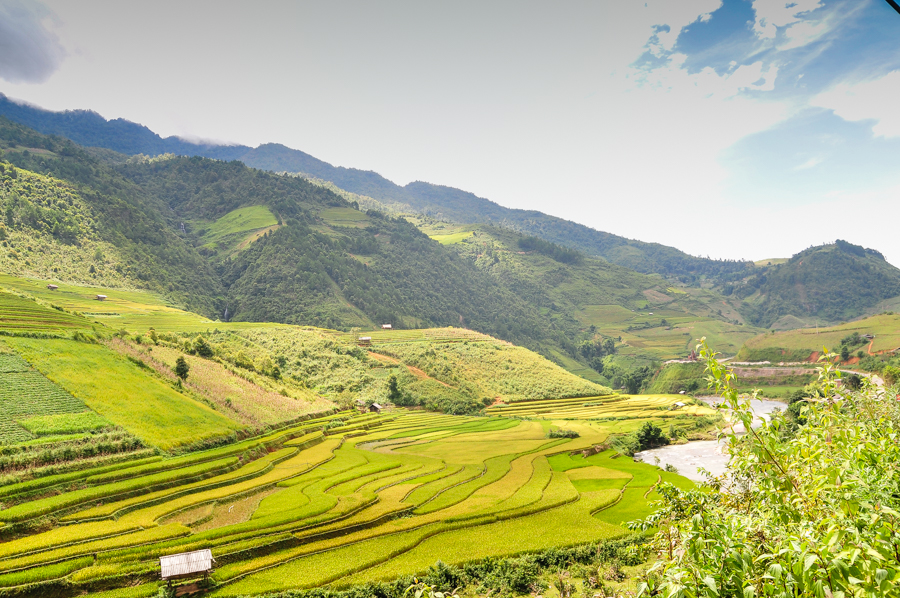 Stunning view rice field from Che Cu Nha