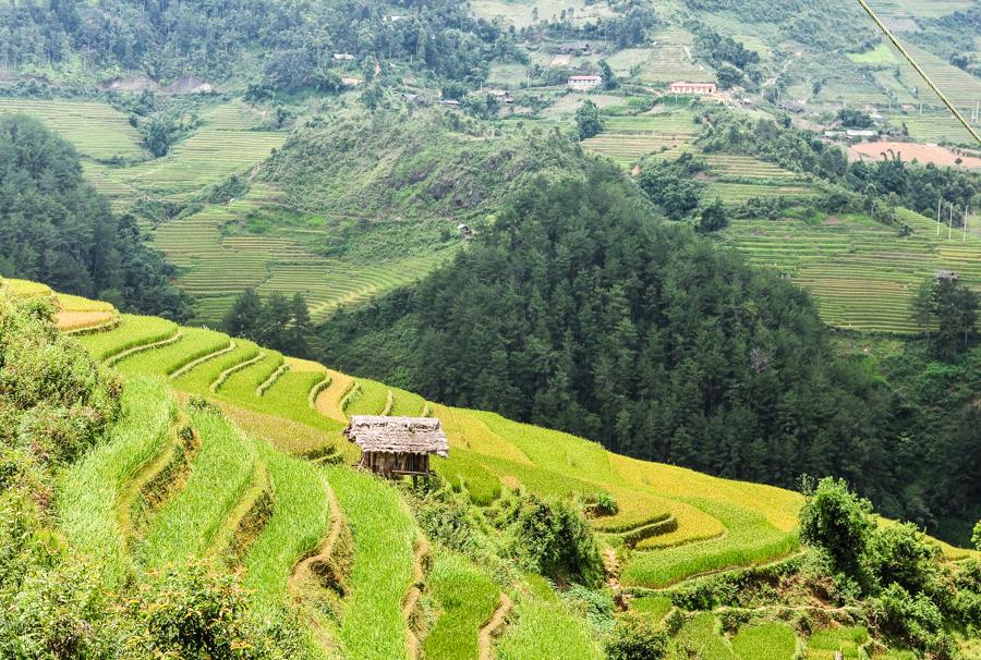 De Xu Phinh Village