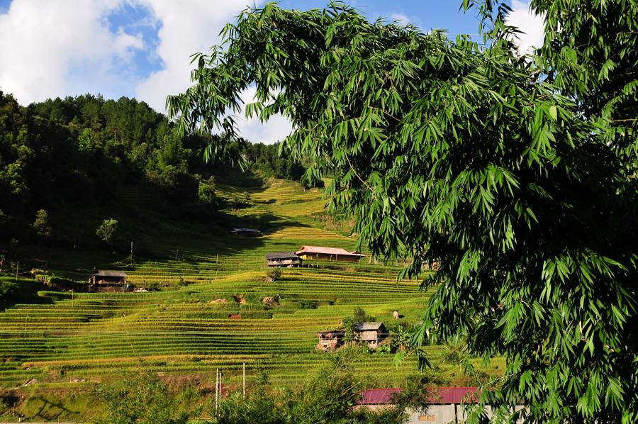 Amazing view of Mu Cang Chai
