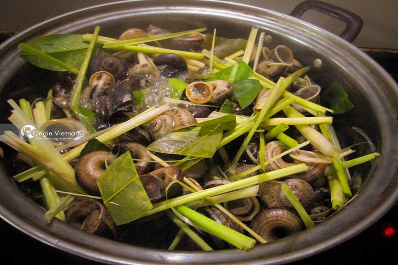 Boiled mountains snails