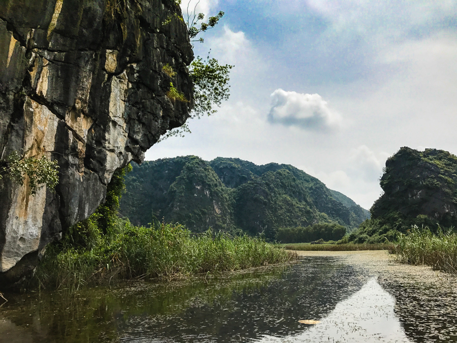 Image of Van Long Nature Reserve