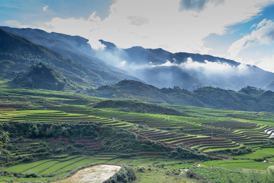 Green terrace rice field in Ta Phin Village