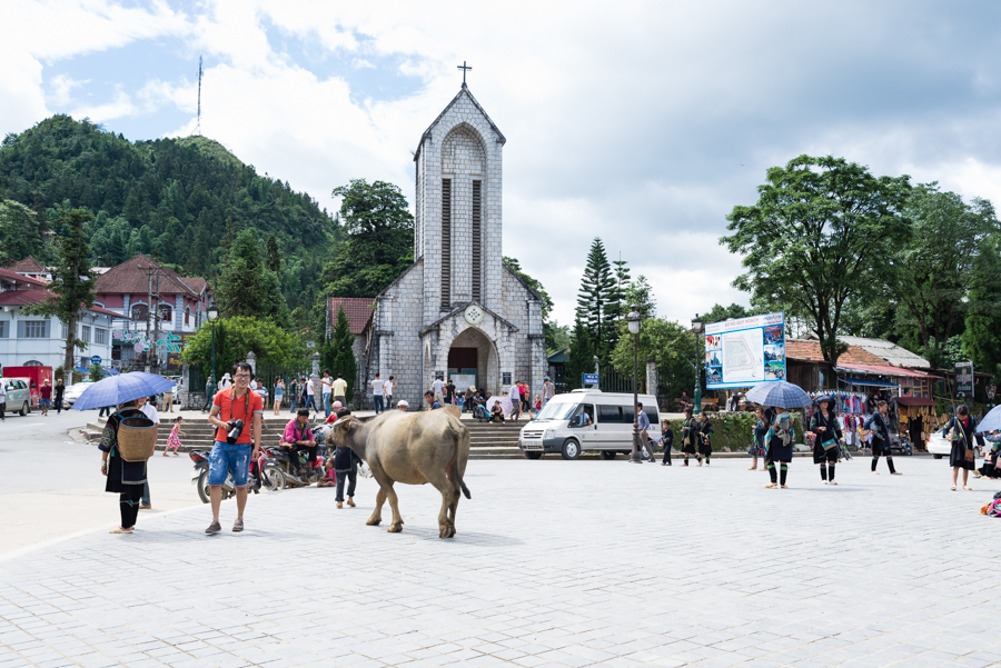 Infront Sapa Church - boy with buffalo