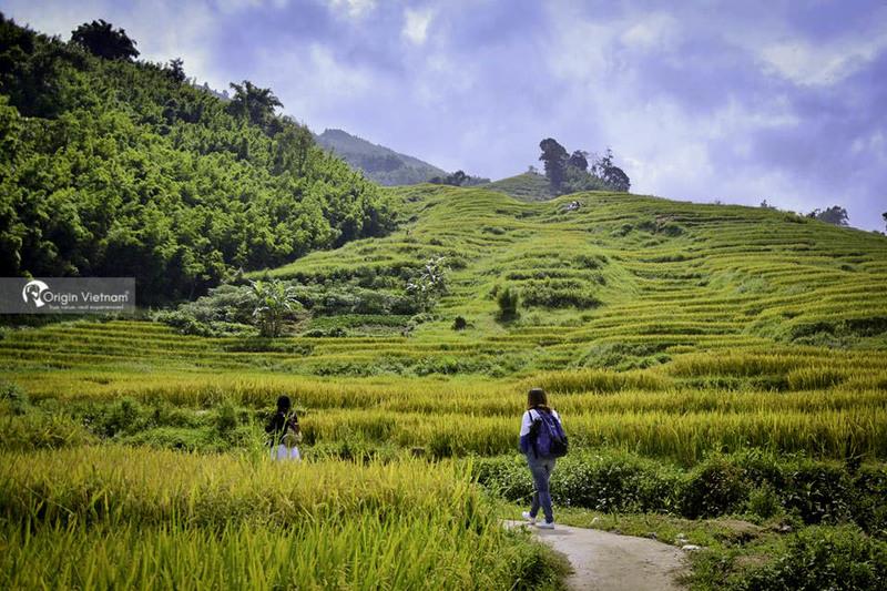 Trekking in Sapa