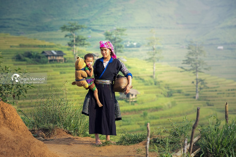 Travel to Sapa in July