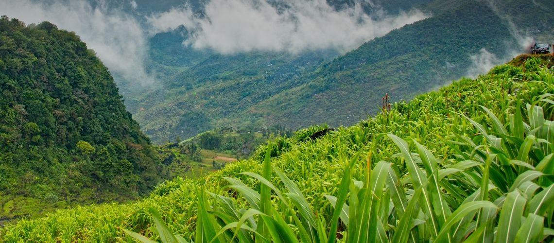Cam Son Mountain