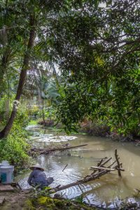 Can_Tho_Ecolodge-452