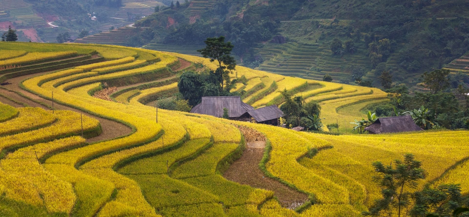 Ha Giang Tour Package