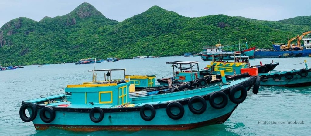 Shark Cape Con Dao Island