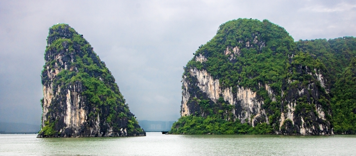 The Journey Of Love And Freedom Dreams In Halong Bay