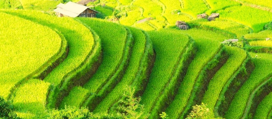 Top 10 Homestay in Ha Giang