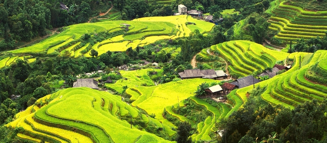 When is the best time to travel to Hoang Su Phi